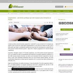 Coopératives : une forme juridique qui crée toujours plus d'emplois en France
