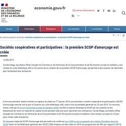 Sociétés coopératives et participatives : la première SCOP d'amorçage est créée