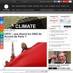COP21: que disent les ONG de l'Accord de Paris?