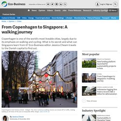 From Copenhagen to Singapore: A walking journey