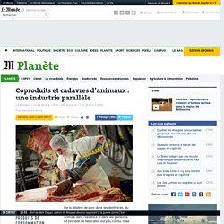 Coproduits et cadavres d'animaux: une industrie parallèle