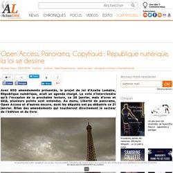 Open Access, Panorama, Copyfraud : République numérique, la loi se dessine