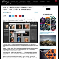 How to copyright photos in Lightroom: protect your images in 6 easy steps