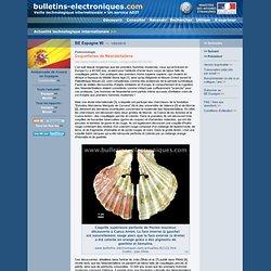 2010/02/01> BE Espagne90> Coquetteries de Néandertaliens