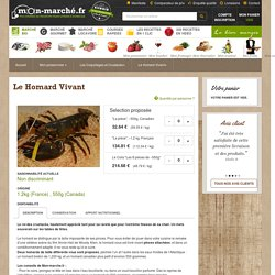 Homard Vivant - Coquillages et Crustacés - Mon poissonnier - Vos Courses en ligne - le 1er marché frais en ligne® en direct de Rungis - Rungis vous livre en 1 clic®