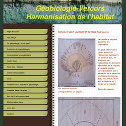 Coquille Saint-Jacques (2) - Site Jimdo de geobiologieenvercors!