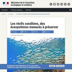 Les récifs coralliens, des écosystèmes menacés à préserver