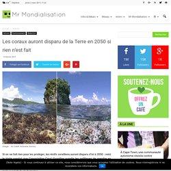 Les coraux auront disparu de la Terre en 2050 si rien n'est fait