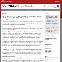 CORNELL UNIVERSITY 25/06/06 Seven-year glitch: Cornell warns that Chinese GM cotton farmers are losing money due to 'secondary'