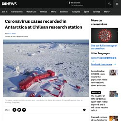 Coronavirus cases recorded in Antarctica at Chilean research station
