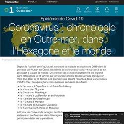 Coronavirus : chronologie en Outre-mer, dans l'Hexagone et le monde - outre-mer la 1ère