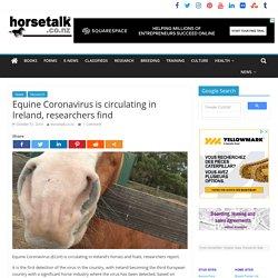 HORSETALK 31/10/19 Equine Coronavirus is circulating in Ireland, researchers find