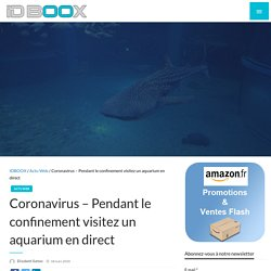 Visitez un aquarium en direct