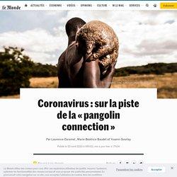 LE MONDE 20/04/20 Coronavirus : sur la piste de la « pangolin connection »