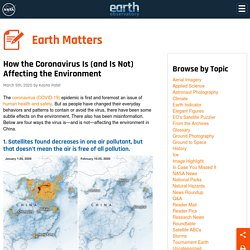 Earth Matters - How the Coronavirus Is (and Is Not) Affecting the Environment
