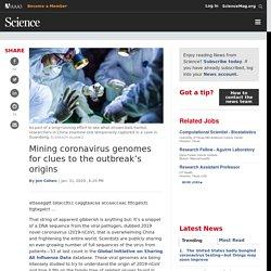 Mining coronavirus genomes for clues to the outbreak's origins