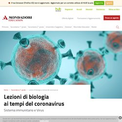 Lezioni di biologia ai tempi del coronavirus. Sistema immunitario e Virus