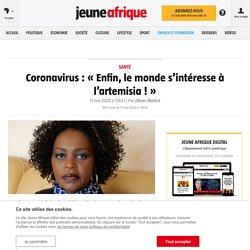 Coronavirus: «Enfin, le monde s'intéresse à l'artemisia!» – Jeune Afrique