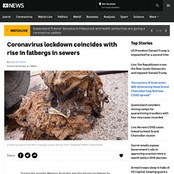 Coronavirus lockdown coincides with rise in fatbergs in sewers