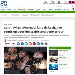 Coronavirus: Pourquoi faire de la chauve-souris un bouc émissaire serait une erreur