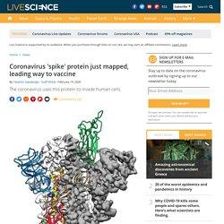Coronavirus 'spike' protein just mapped, leading way to vaccine