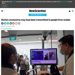 NEW SCIENTIST 22/01/20 Wuhan coronavirus may have been transmitted to people from snakes