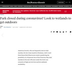 Park closed during coronavirus? Look to wetlands to get outdoors
