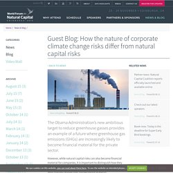 Guest Blog: How the nature of corporate climate change risks differ from natural capital risks