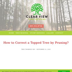 How to Correct a Topped Tree by Pruning?