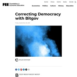 Correcting Democracy with Bitgov