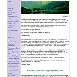 Kamilari - Correcting a Malfunctioning Liver the Natural Way