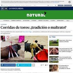 Corridas de toros: ¿tradición o maltrato?