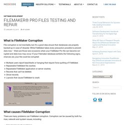 FileMaker Database Corruption Inspection Report