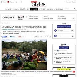 L EXPRESS 17/07/09 La Corse, LA bonne élève de l'agriculture bio