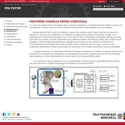 Prothèse visuelle intra-corticale - Polystim