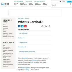 Cortisol: What It Does & How To Regulate Cortisol Levels