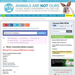 Search for Cruelty-Free Companies