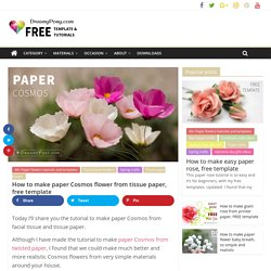 How to make paper Cosmos flower from tissue paper, free template