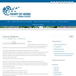 Cosmos Medicine - Heart Of Herbs Herbal School