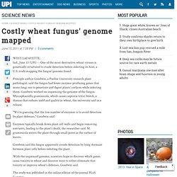 UPI 13/06/11 Costly wheat fungus' genome mapped (Mycosphaerella graminicola)