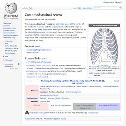 Costomediastinal recess