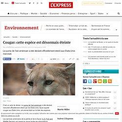 Cougar: cette espèce est désormais éteinte