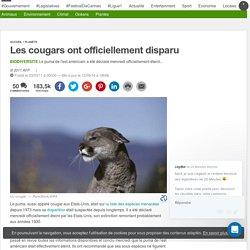 Les cougars ont officiellement disparu