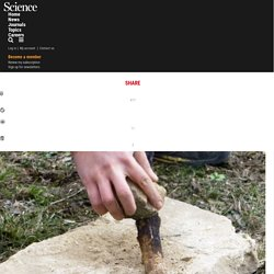 Could these be the oldest Neandertal tools made with fire?