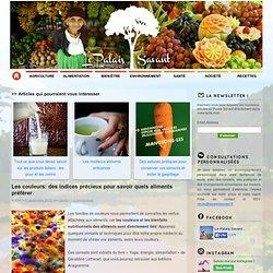 Les couleurs: des indices précieux pour savoir quels aliments préférer