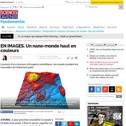 EN IMAGES. Un nano-monde haut en couleurs