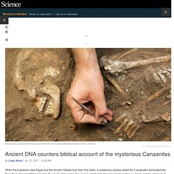 Ancient DNA counters biblical account of the mysterious Canaanites