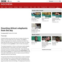 Counting Africa's elephants from the sky - BBC Indonesia