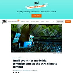 Small countries made big commitments at the U.N. climate summit