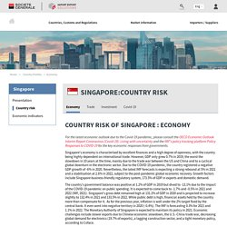 Country risk of Singapore : Economy
